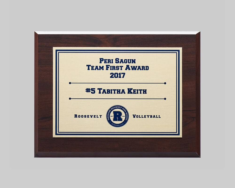 2017 Plaque custom plaque for sports by APS