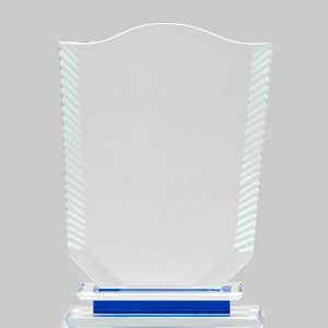 custom crystal awards and trophies at Awards Program Services