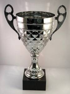 Silver Faceted Cup Trophy in Des Moines.