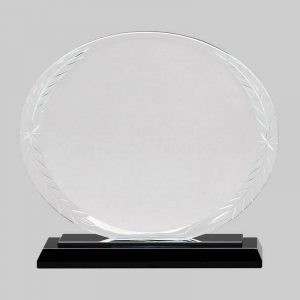 Glass oval award.