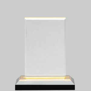 Acrylic award with gold base.