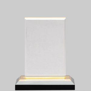 Acrylic award with gold base.